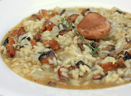 like mushrooms, you're going to LOVE this risotto! Like all risotto ...